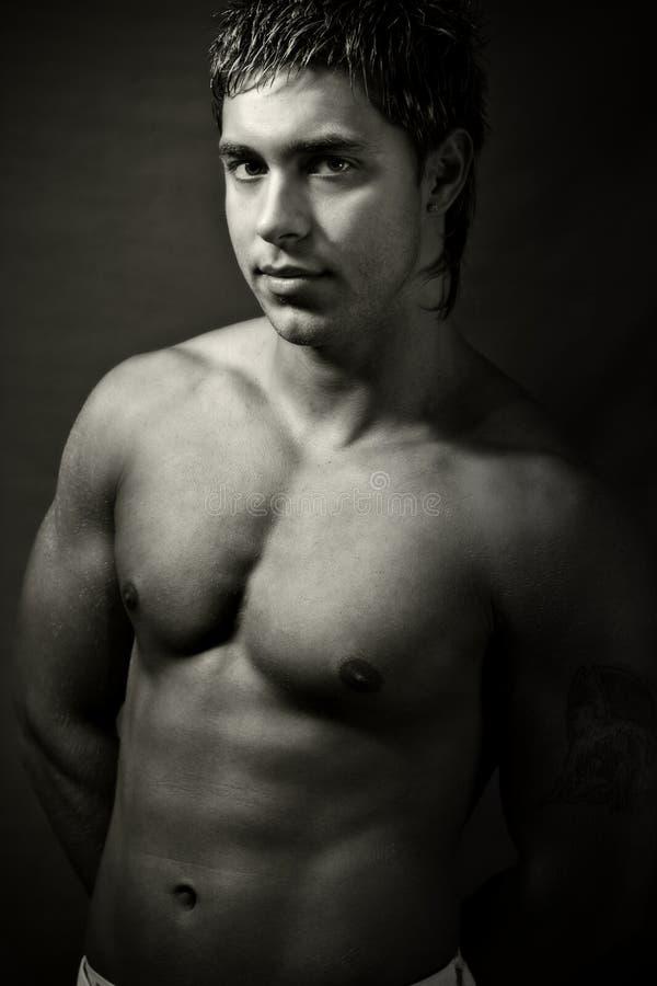 Reizvoller stattlicher muskulöser junger Mann stockfotografie