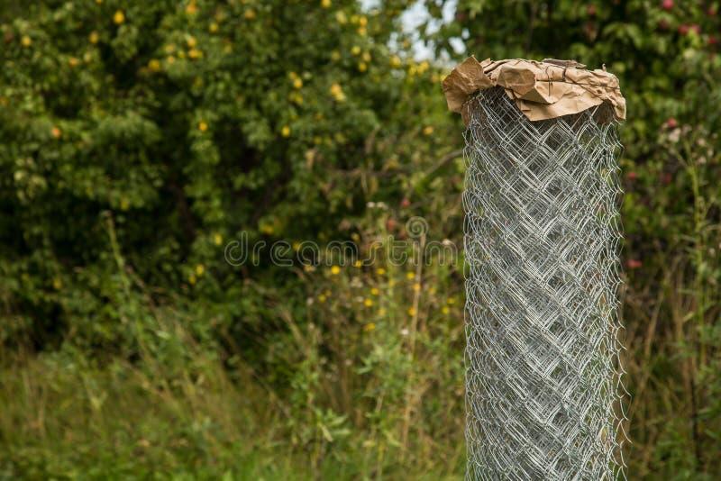 Rejilla de Rabitz en un rollo encendido en jardín Foco selectivo Espacio libre para el texto fotografía de archivo libre de regalías