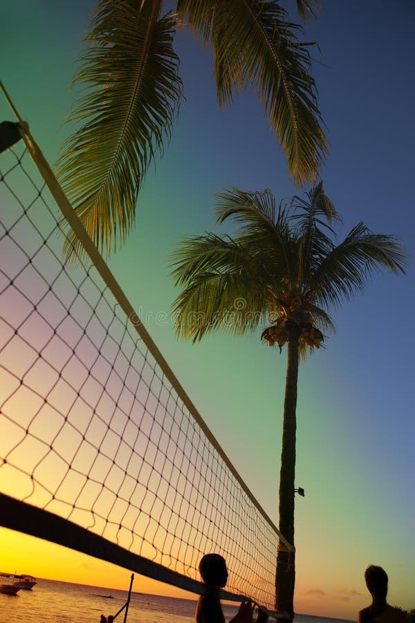 Rejilla para el voleibol de playa entre las palmeras en una puesta del sol y el fondo del mar fotografía de archivo libre de regalías