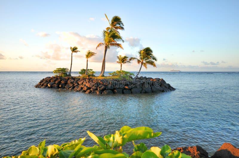 rejs dezerterował wyspy palmowych statku drzewa fotografia royalty free