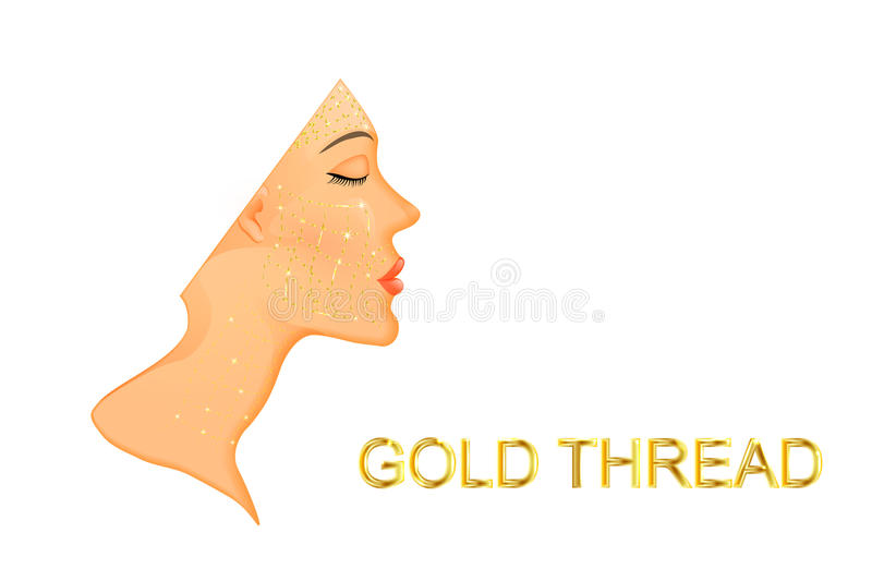 Rejuvenation of the face and neck with gold thread. Illustration of facial rejuvenation and neck with gold thread.before and after stock illustration
