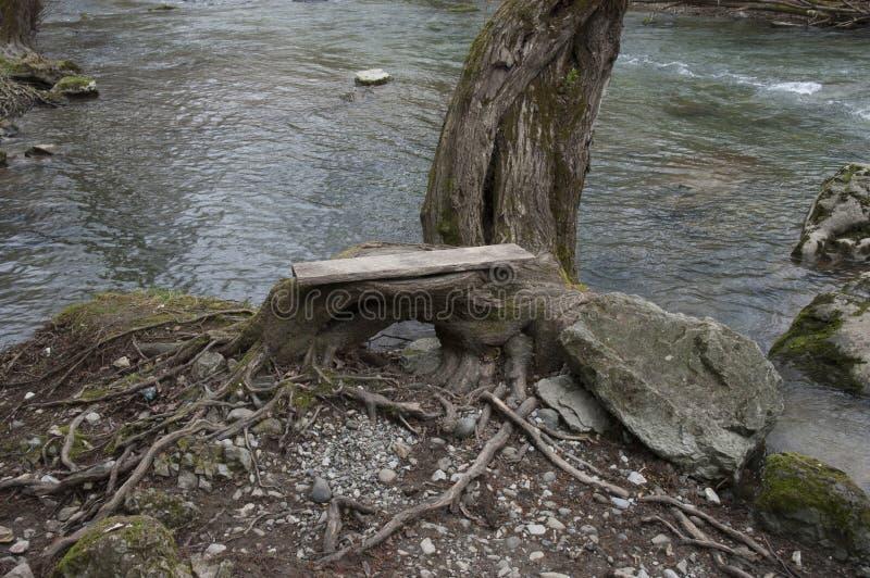 Reka Uvac u Srbiji, rio Uvac na Sérvia imagens de stock