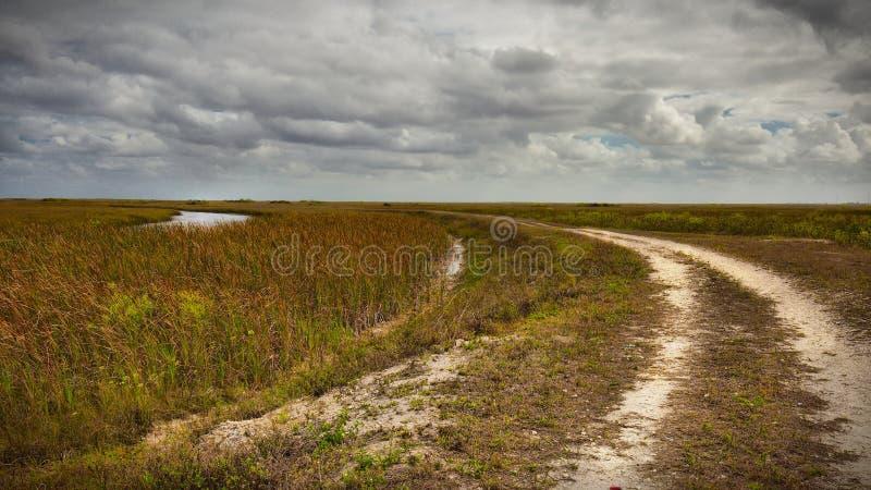 Rekin rzeka Slough-1 obraz royalty free