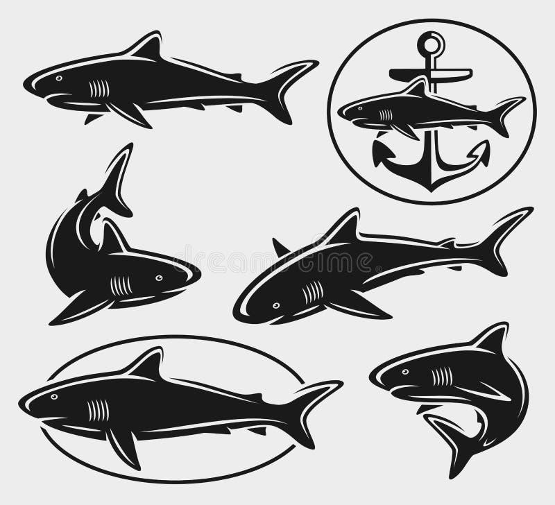 Rekinu set. Wektor ilustracji