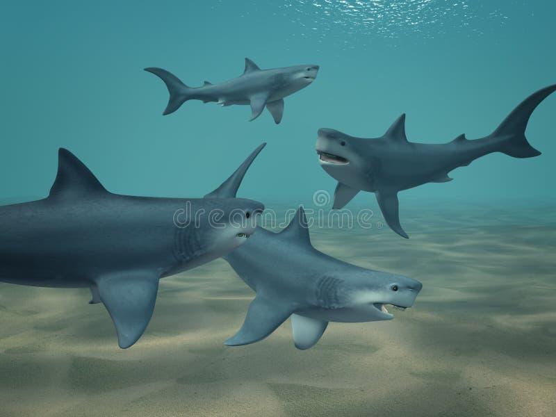 Download Rekiny ilustracji. Ilustracja złożonej z przyroda, morderca - 13331570