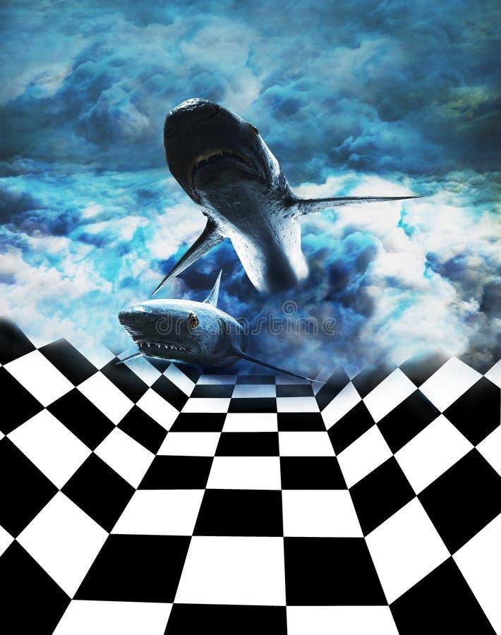 rekiny bojowych obrazy royalty free