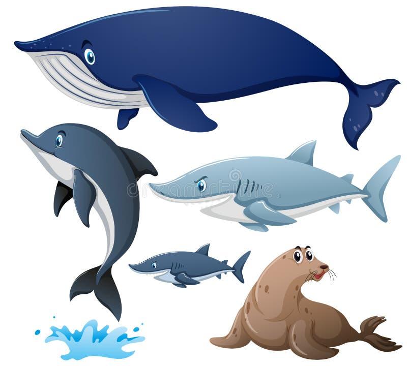 Rekiny i inni denni zwierzęta ilustracji