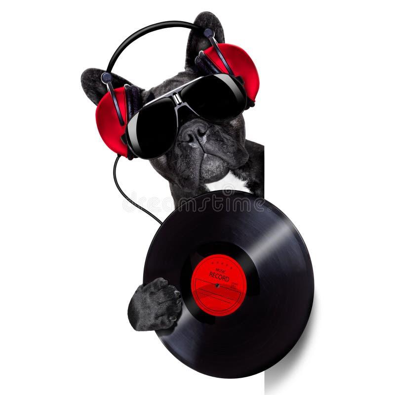Rekord- vinyl för hund royaltyfria foton