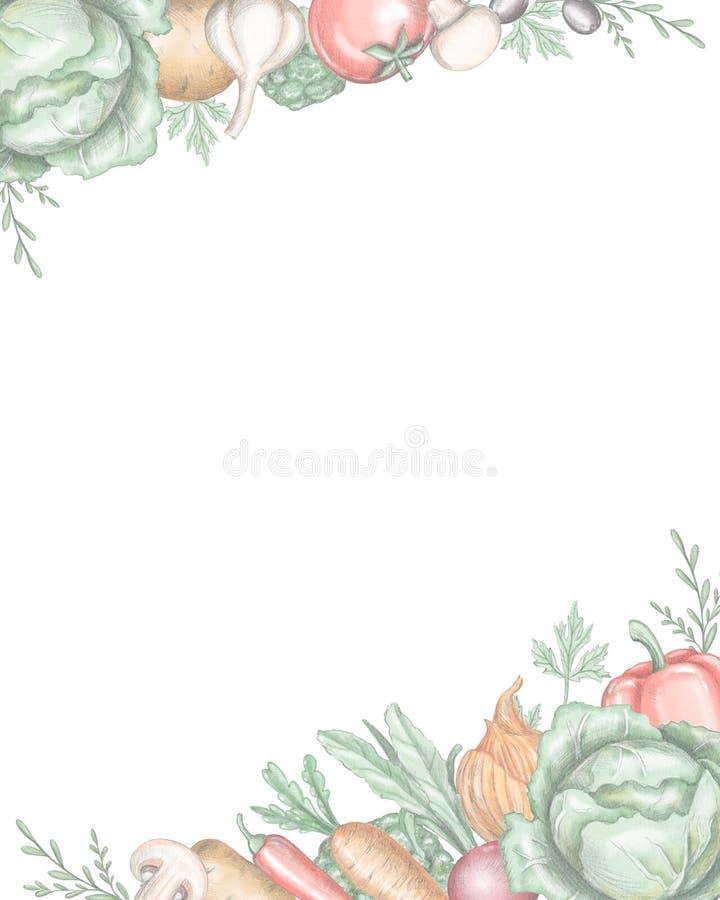 Rektangulär inrama gräns med olika nya grönsaker royaltyfri illustrationer