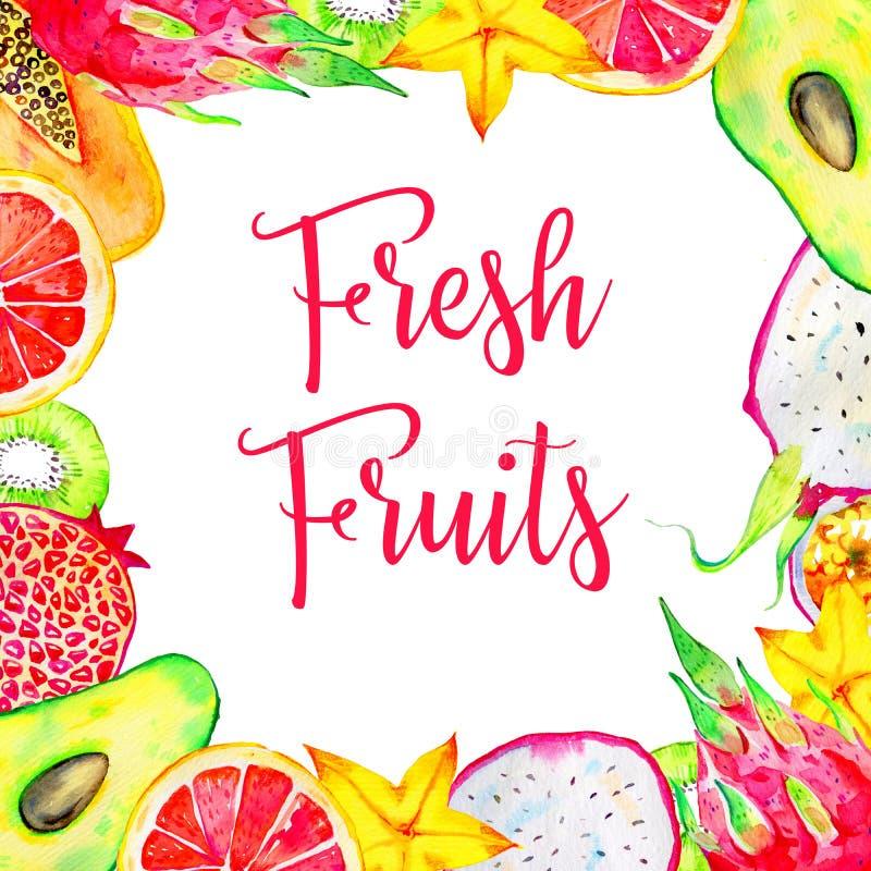 Rektangulär ram med exotiska frukter Avokado pitahaya, kiwi, citrus, avokado, papaya Hand dragen vattenfärgillustration royaltyfri foto