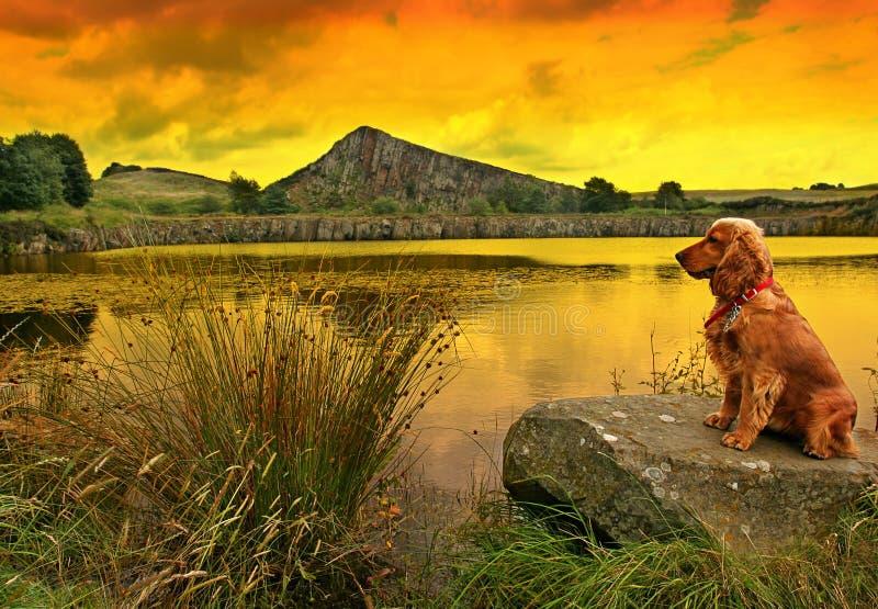 Relógio do por do sol fotos de stock royalty free