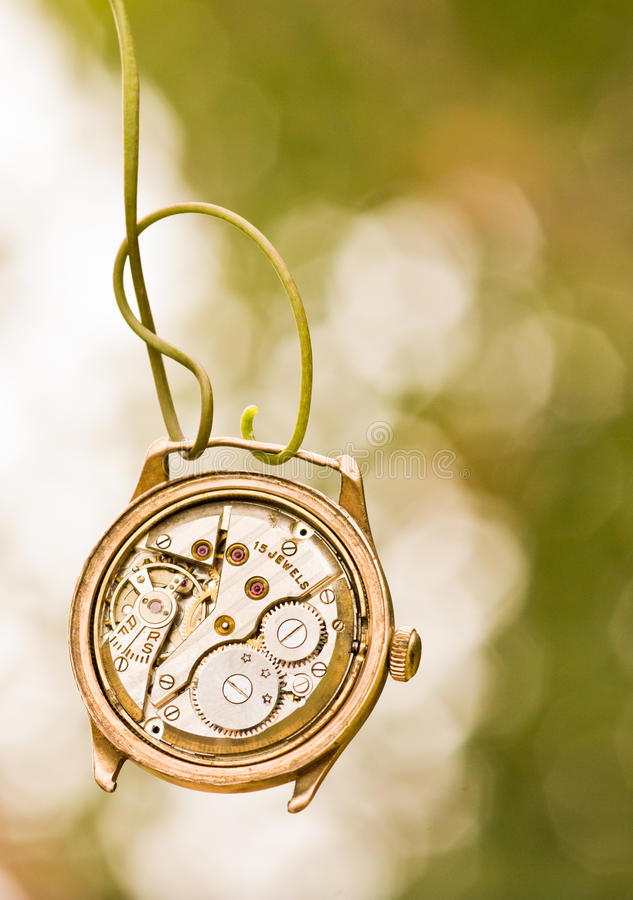 Relógio quebrado que pendura na videira imagem de stock royalty free