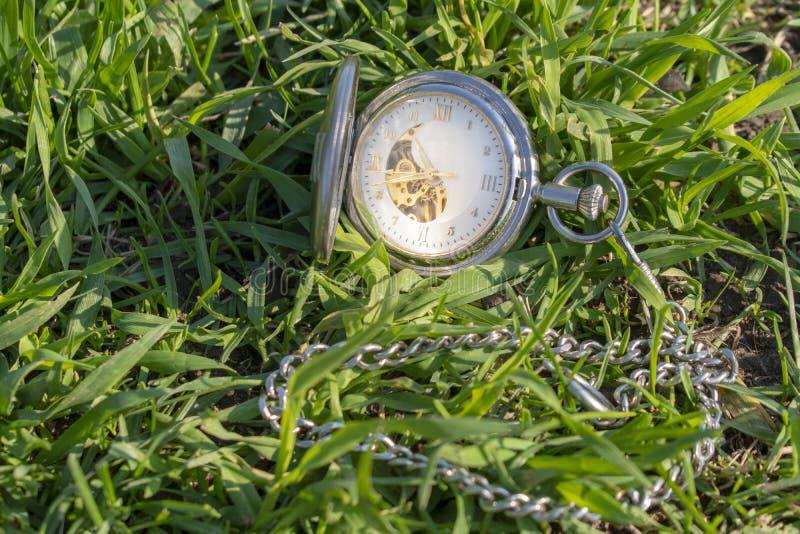 Rel?gio de bolso do vintage na m?o masculina em um fundo da grama verde Rel?gio de Steampunk Dia de ver?o ensolarado O mecanismo  fotos de stock