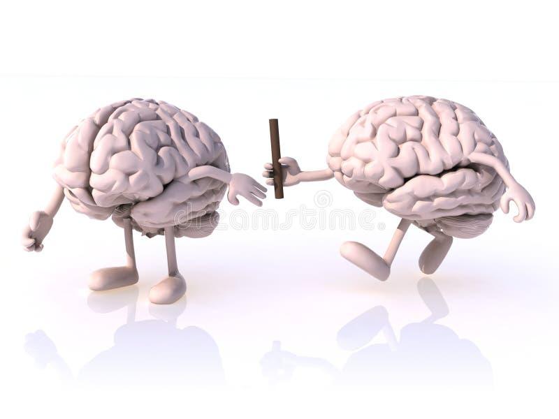Relais tussen hersenen stock illustratie