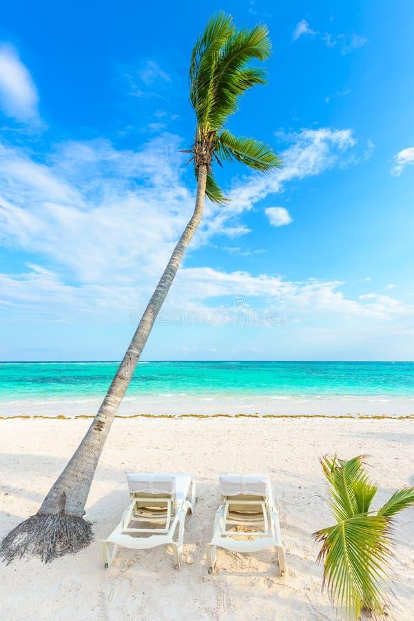 Relaj?ndose en ocioso del sol en la playa de Akumal - maya de Riviera - playas del para?so en Cancun, Quintana Roo, M?xico - cost foto de archivo libre de regalías