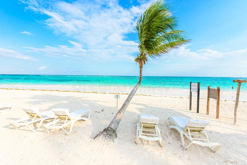 Relaj?ndose en ocioso del sol en la playa de Akumal - maya de Riviera - playas del para?so en Cancun, Quintana Roo, M?xico - cost imagen de archivo