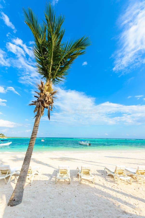 Relaj?ndose en ocioso del sol en la playa de Akumal - maya de Riviera - playas del para?so en Cancun, Quintana Roo, M?xico - cost foto de archivo