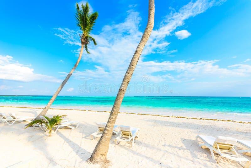 Relaj?ndose en ocioso del sol en la playa de Akumal - maya de Riviera - playas del para?so en Cancun, Quintana Roo, M?xico - cost fotografía de archivo libre de regalías