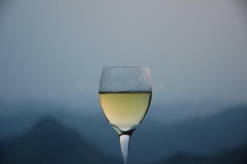 Relajación con un vidrio de vino blanco foto de archivo libre de regalías
