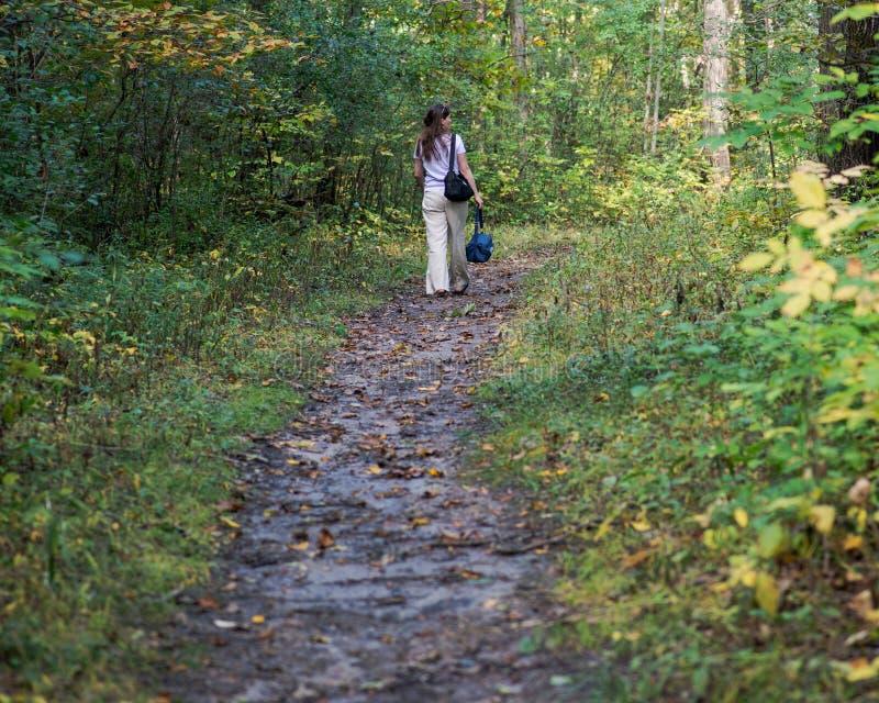 Relajación de la mujer joven, caminando en coto del bosque fotos de archivo libres de regalías