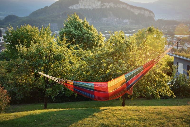 Relajación en una hamaca en un jardín enorme en verano foto de archivo