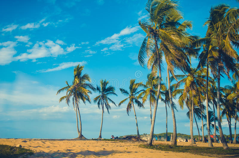 Relaksować na dalekiej Tropikalnej raj plaży wewnątrz obrazy royalty free