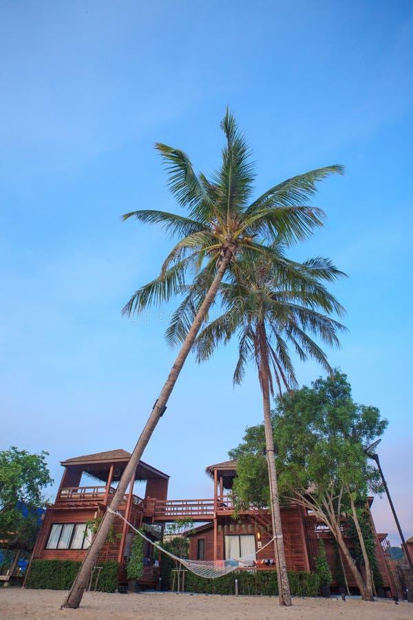 Relaksować pod Kokosowymi drzewami na niebieskim niebie i plaży zdjęcia stock