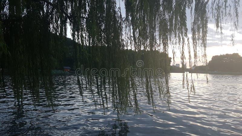Relaksować sercem Hangzhou obraz stock