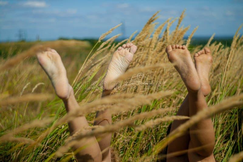 Relaksować w natury kobiecie iść na piechotę między spikelets i trawą w polu obraz royalty free
