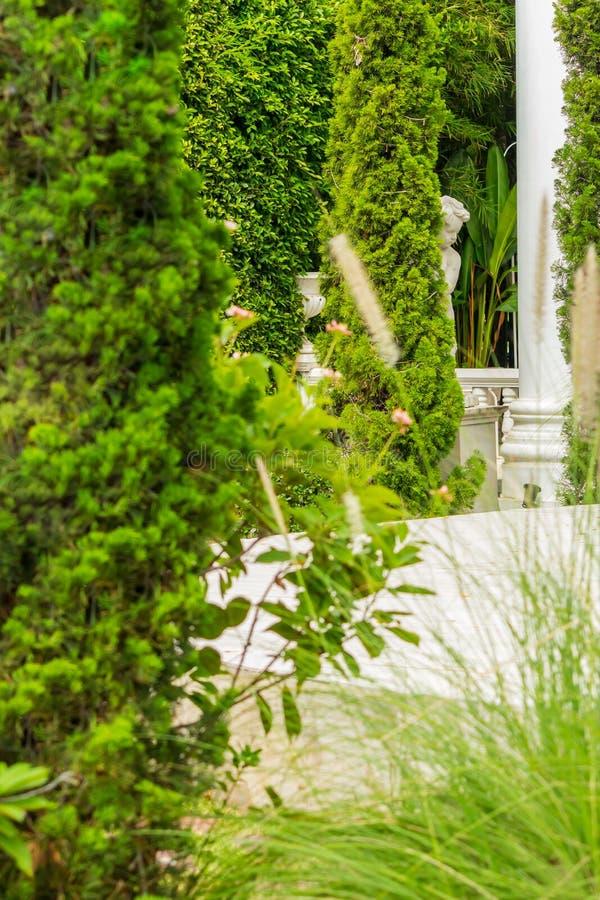 Relaksująca przestrzeń w wygodnym ogródzie fotografia stock