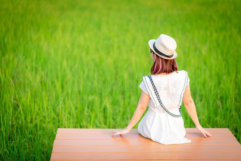 Relaksujący młodej kobiety obsiadanie w naturze na drewnie, patrzeje zielonych pola, odświeżająca natura, Azjatycki kobiety obsia zdjęcia stock