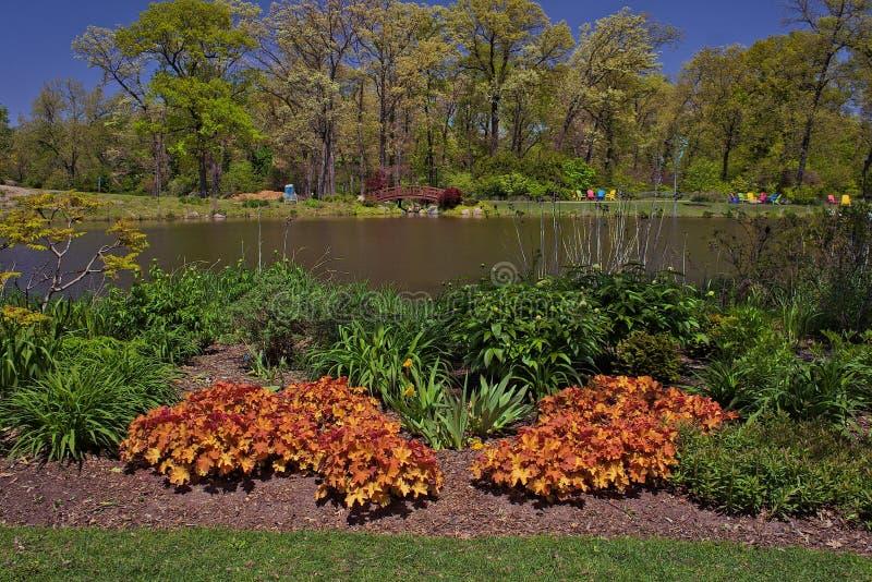 Relaksujący widok ogród z jeziorem zdjęcia stock