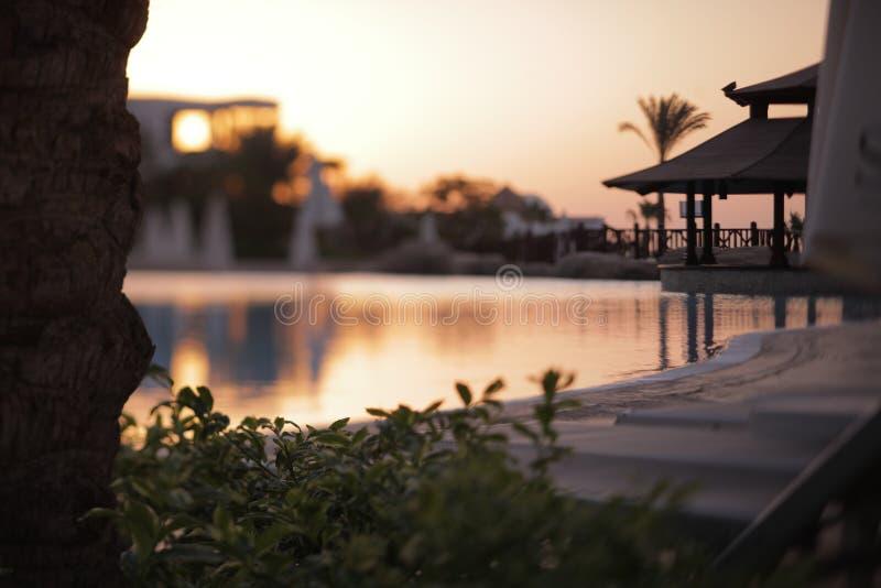 Relaksuje blisko basenu widoku na zmierzchu przy wakacjami przy latem obrazy royalty free