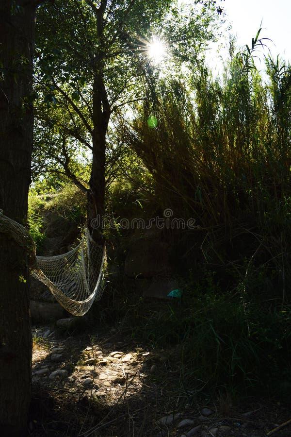 Relaksuje naturę fotografia stock