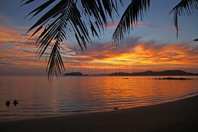 Relaksuje pięknego urlopowego kokosowego drzewa pięknego zmierzch przy koh Mak wyspą Trad Tajlandia obrazy stock