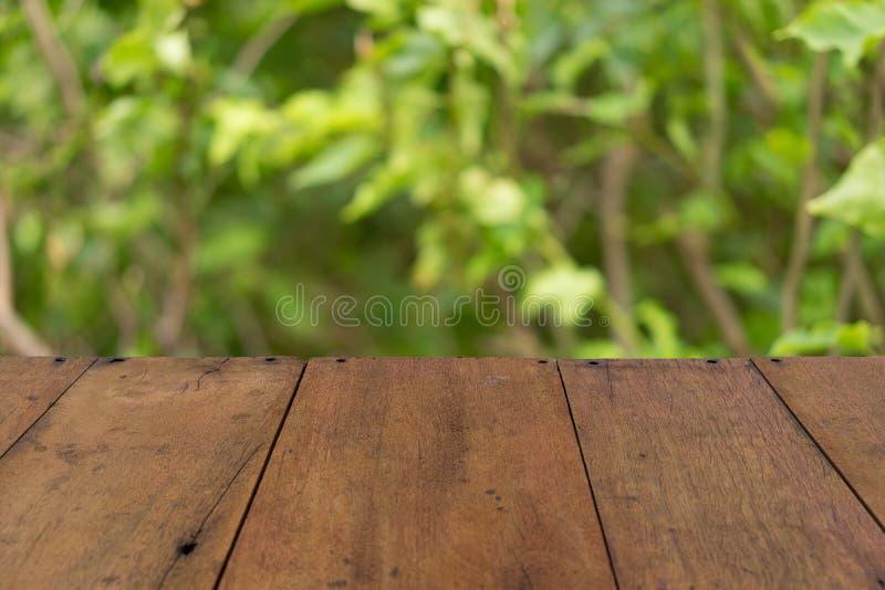 Relaksuje przy lasem fotografia stock