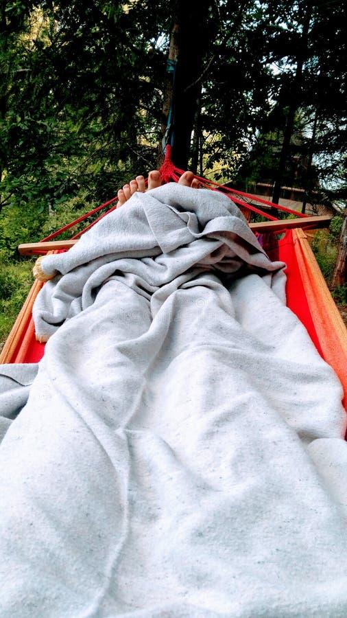 Relaksuje w lesie fotografia stock