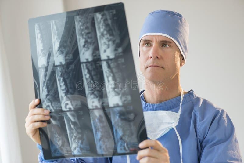 Relatório do raio X de Analyzing do cirurgião fotografia de stock