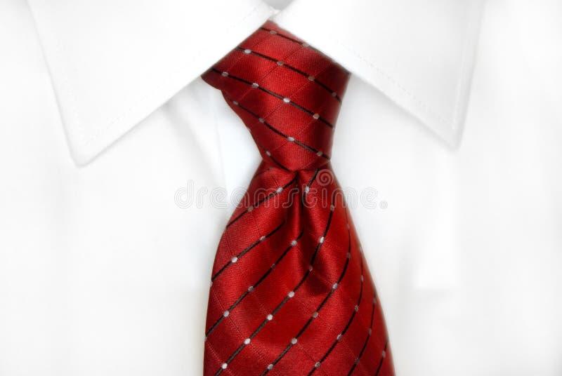 Relation étroite rouge de chemise blanche image libre de droits