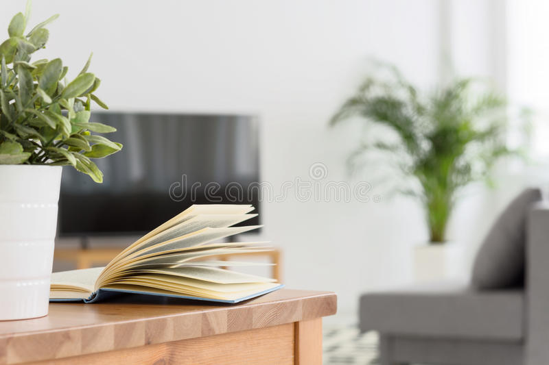 Relax with book or tv? royalty free stock photo