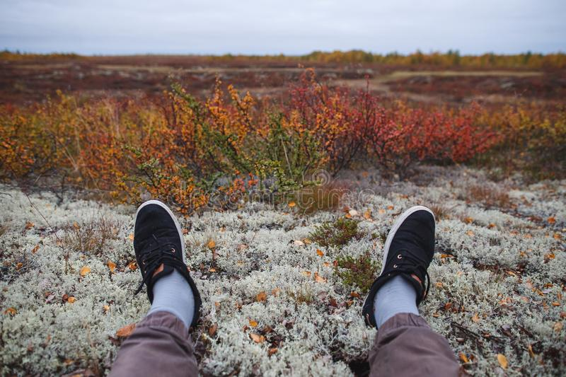 Relax in Northern Nature. Hiking boots on the moss in the autumn tundra royalty free stock image