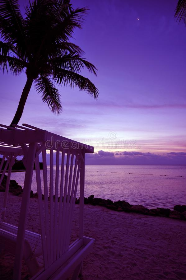 Relax in the Sunset royalty free stock photos