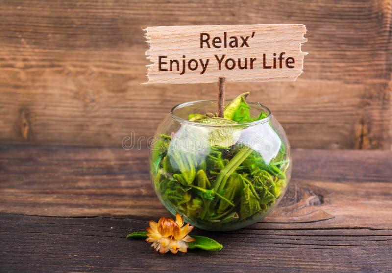 Relax tycker om ditt liv arkivbild