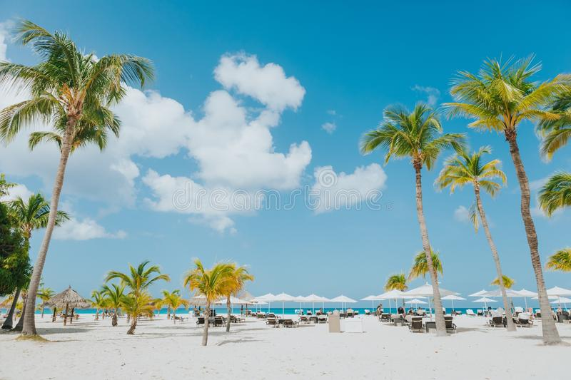 Mancheabo beach white sand palms blue sky's blue ocean tropical weather Caribbean Sea relaxation royalty free stock image