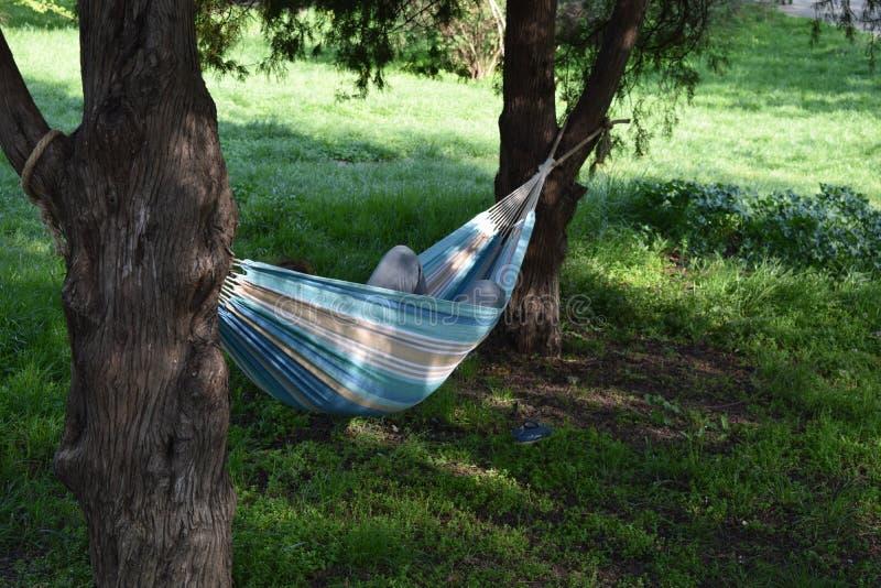 Relaxamento em um Hammock imagem de stock