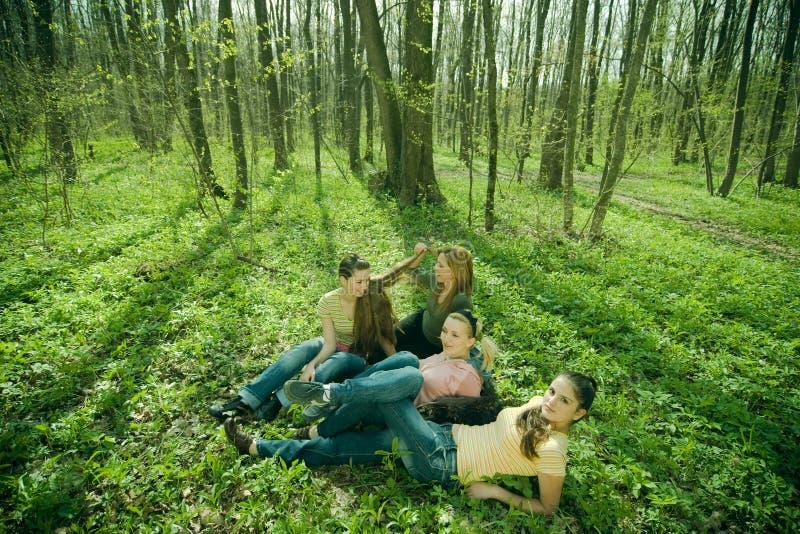 Relaxamento nas madeiras imagens de stock royalty free