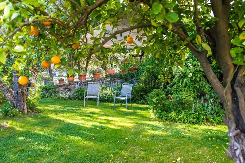 Relaxamento no jardim bonito com cadeiras fotografia de stock