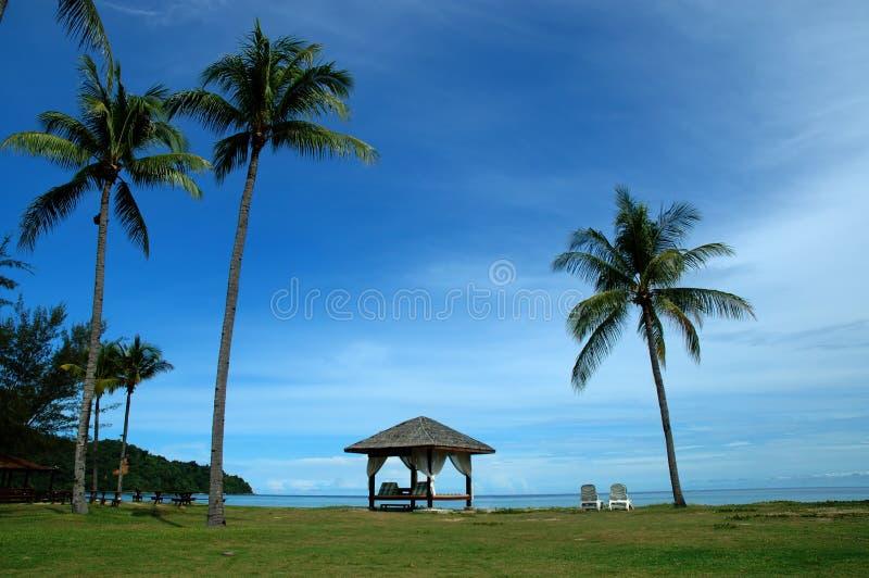 Download Relaxando 2 foto de stock. Imagem de descansar, palma, oceanos - 53872