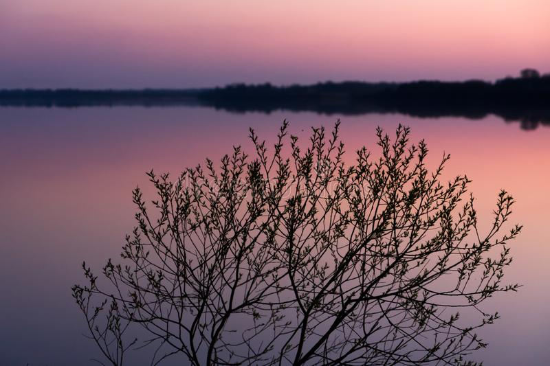 Relaxation landscape with a pink sunset on a serene lake with a smooth water surface stock image