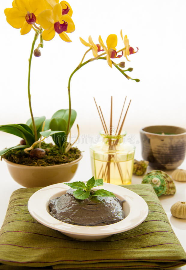 Download Relaxation Spa Concept stock image. Image of blossom - 26338947